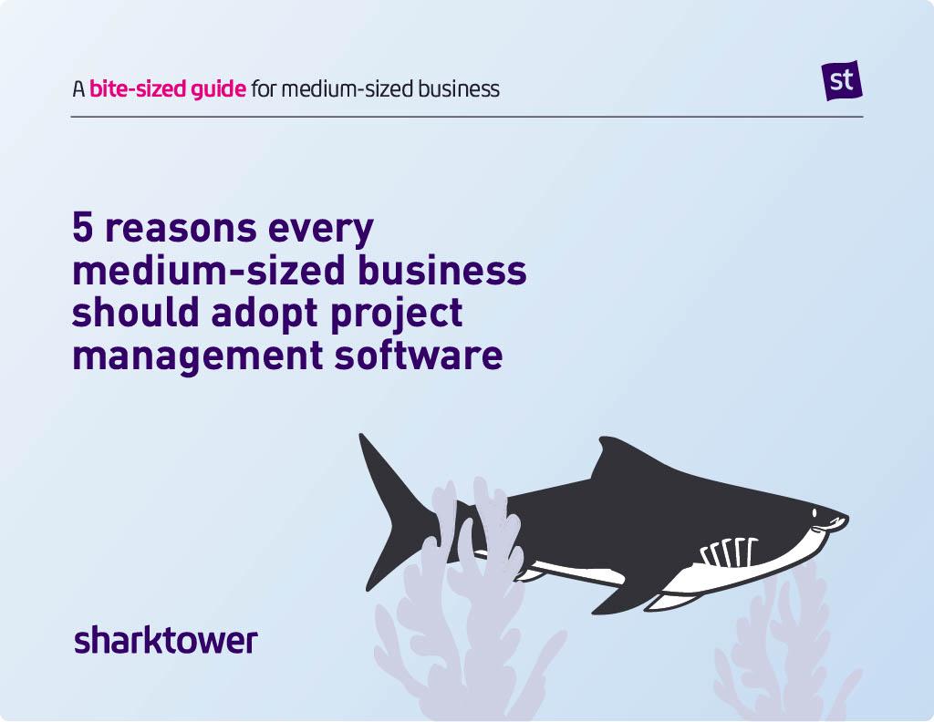 Sharktower-Bitesize-Guide-for-medium-sized-business-cover-image